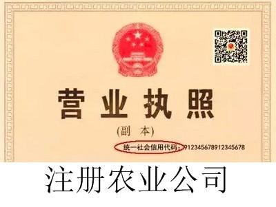 最新厦门农业公司注册流程